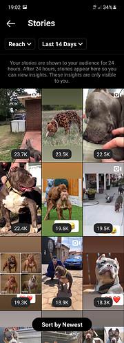 Screenshot_20210520-190237_Instagram